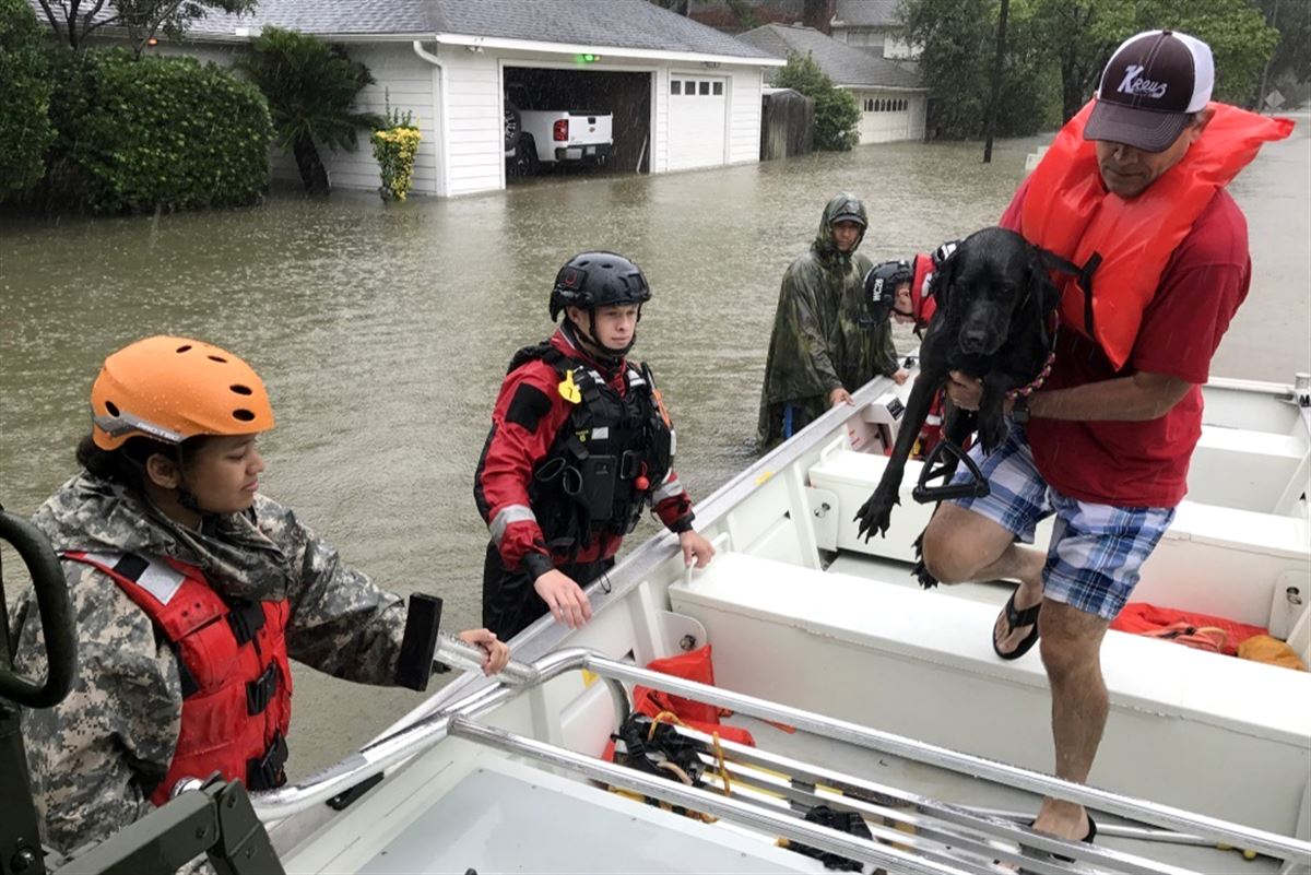 Texas National Guard rescues a resident and his dog, Cypress Creek, Texas (photo: Department of Defense)