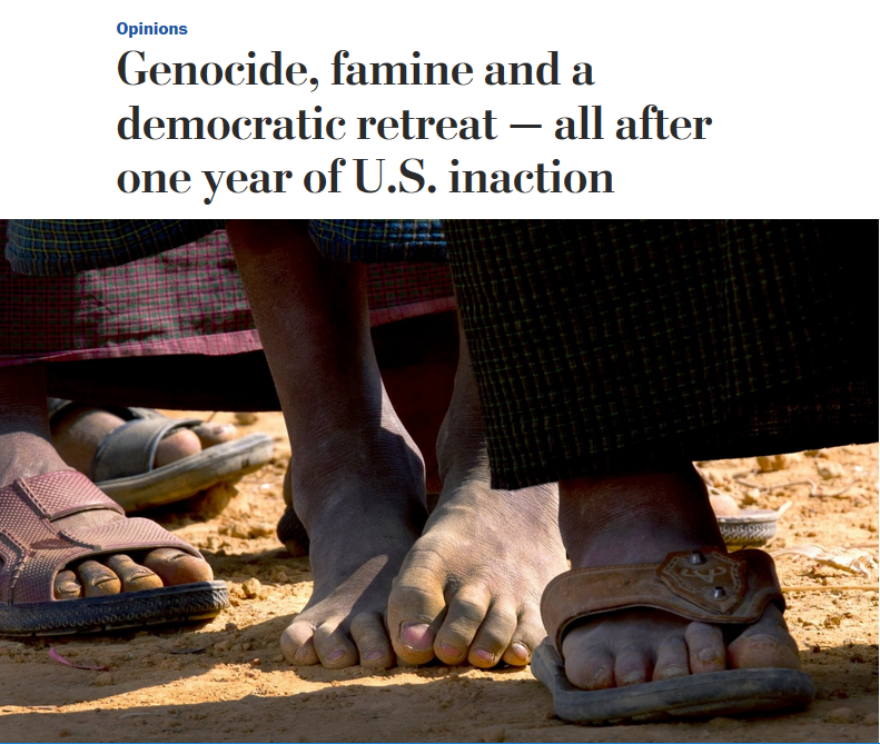 WaPo: Genocide, Famine and a Democratic Retreat--All After One Year of US Inaction