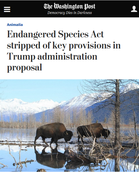 WaPo: Endangered Species Act Stripped of Key Provisions in Trump Administration Proposal