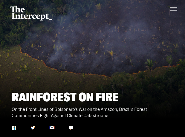 Intercept: Rain Forest on Fire