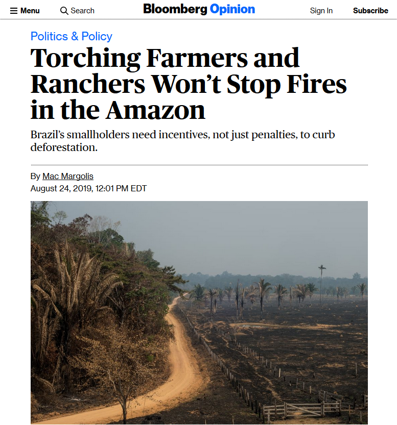 Bloomberg: Torching Farmers and Ranchers Won't Stop Fires in the Amazon