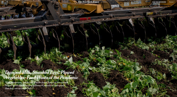 NYT: Dumped Milk, Smashed Eggs, Plowed Vegetables: Food Waste of the Pandemic