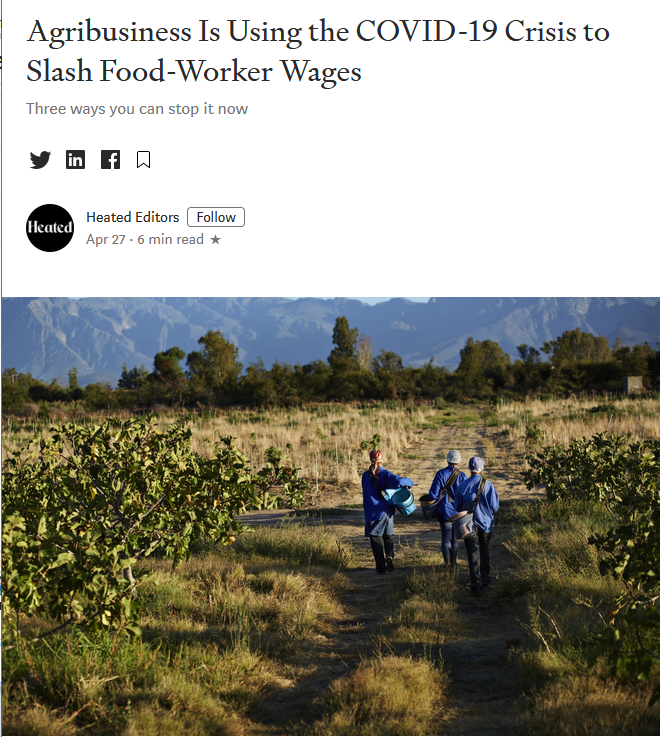Medium: Agribusiness Is Using the COVID-19 Crisis to Slash Food-Worker Wages