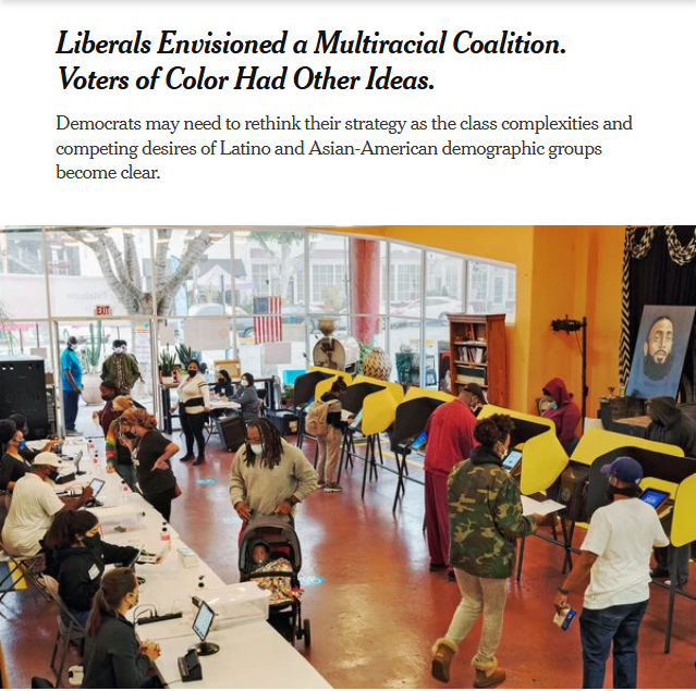 NYT: Liberals Envisioned a Multiracial Coalition. Voters of Color Had Other Ideas.